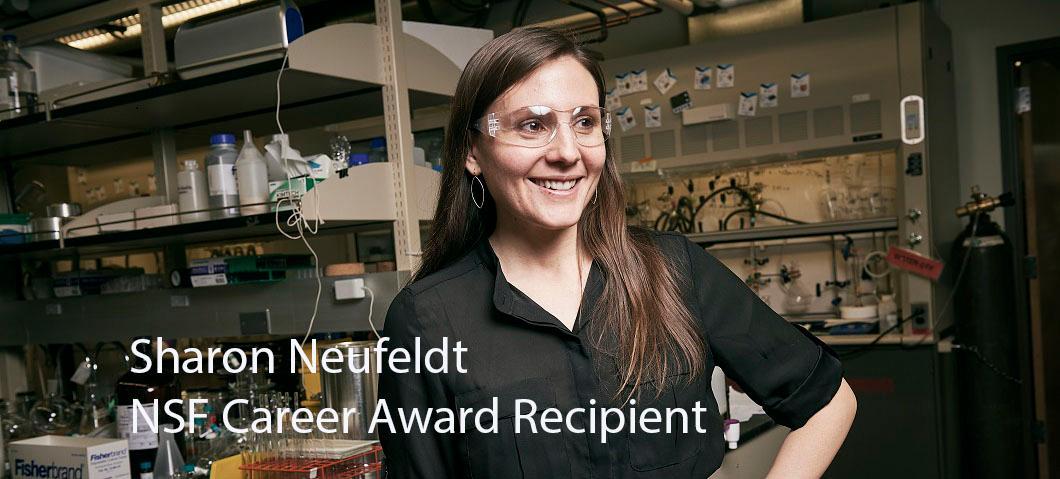 NSF Career Award Recipient